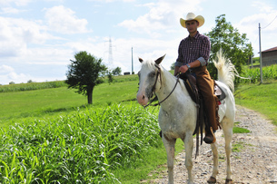 Portrait of young man in cowboy gear riding horse on rural roadの写真素材 [FYI03517305]