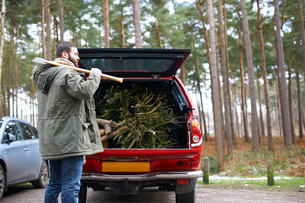 Young man with axe and chopped Christmas tree in car bootの写真素材 [FYI03518686]