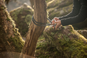 Woman attaching carabiner and rope to tree trunkの写真素材 [FYI03519217]