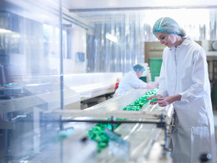 Worker inspecting chocolate on production line in chocolate factoryの写真素材 [FYI03520415]