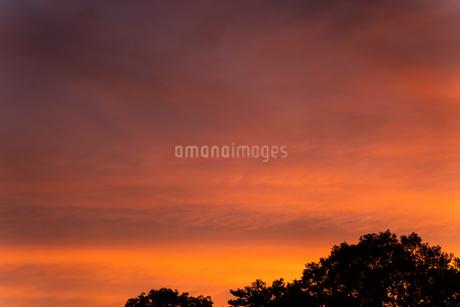 夕焼け2の写真素材 [FYI03520498]