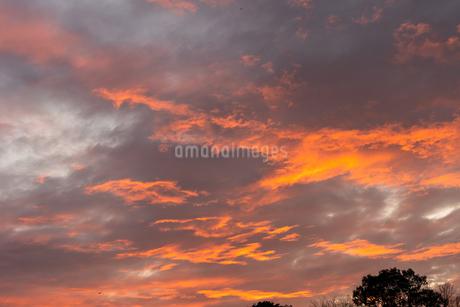 夕焼け3の写真素材 [FYI03520513]