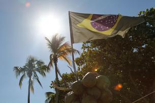 Brazilian flag and coconuts, Rio De Janeiro, Brazilの写真素材 [FYI03521171]
