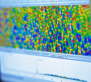 Close up of genetic map on computer screen in laboratoryの写真素材 [FYI03521822]