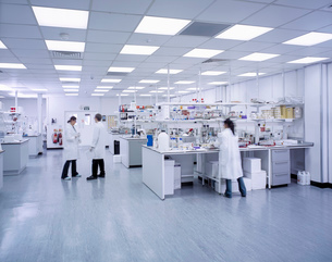 Wide angle view of scientists working in laboratoryの写真素材 [FYI03521823]