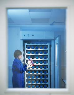 Sample storage in laboratoryの写真素材 [FYI03521824]