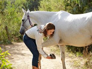 Teenage girl checking horse hoofの写真素材 [FYI03522428]