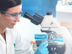 Scientist holding microscope slide with blood sample in labの写真素材 [FYI03522491]