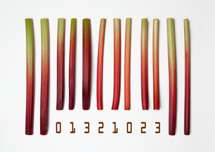 Barcode made with rhubarb sticksの写真素材 [FYI03522977]