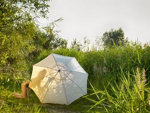 Young women wearing bikini kneeling behind sunlit garden parasolの写真素材 [FYI03523006]