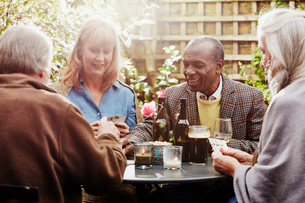 Senior friends drinking and playing cards in gardenの写真素材 [FYI03523411]
