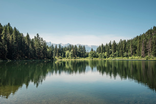 View of lake and forests, British Columbia, Canadaの写真素材 [FYI03523670]