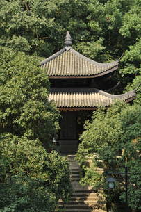 Pavilion on mountains, surrounded by trees, Hangzhou, Chinaの写真素材 [FYI03523752]