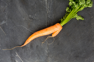 Still life of fresh misshapen carrotの写真素材 [FYI03524030]