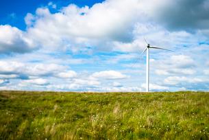 View of wind turbine in cotton grass field, UKの写真素材 [FYI03524093]