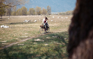 Young woman cycling along rural trackの写真素材 [FYI03525656]