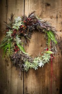 Christmas wreath with foliage and berries on wooden doorの写真素材 [FYI03526758]