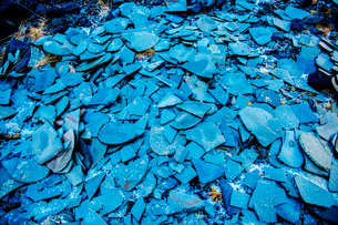 Large stack of raw blue slate fragmentsの写真素材 [FYI03527473]