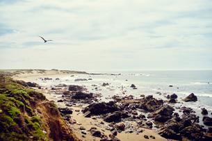 View of rocky coastline, Big Sur, California, USAの写真素材 [FYI03527681]