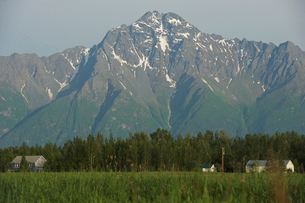 Matanuska Valley, Palmer, Alaska, USAの写真素材 [FYI03529309]