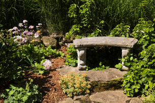 Border with romanesque garden bench and perennial plants, flowers and shrubs in spring seasonの写真素材 [FYI03530114]