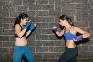 Two friends exercising together boxingの写真素材 [FYI03530736]