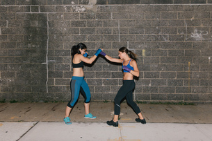 Two friends exercising together boxingの写真素材 [FYI03530738]