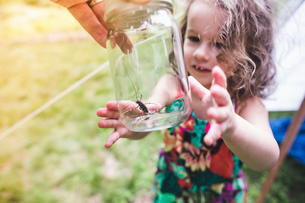 Grandfathers hand holding insect in jar for granddaughterの写真素材 [FYI03531201]