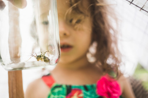Close up of grandfathers hand holding insect in jar for granddaughterの写真素材 [FYI03531203]