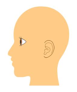 人の横顔のイラスト素材 [FYI03531459]