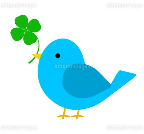 クローバーをくわえる青い鳥のイラスト素材 [FYI03531484]
