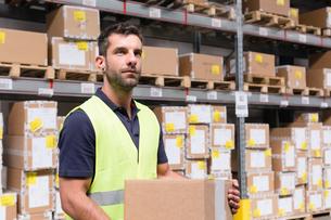 Male warehouse worker preparing order in distribution warehouseの写真素材 [FYI03533098]