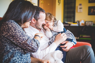Shy female toddler sitting on fathers lap in living roomの写真素材 [FYI03533691]