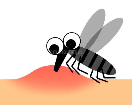 血を吸う蚊のイラスト素材 [FYI03534346]