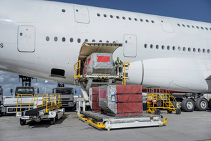 Ground crew loading freight and luggage into A380 aircraftの写真素材 [FYI03536458]