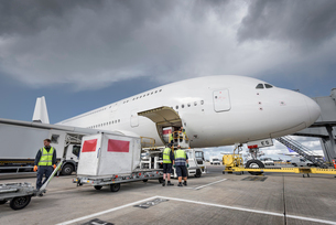 Ground crew loading freight onto A380 aircraftの写真素材 [FYI03536472]