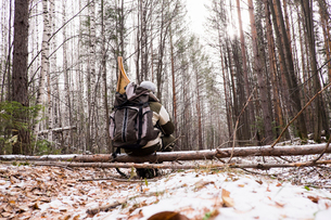 Rear view of male hiker in snow covered forest with snow shoes in backpack, Ural, Russiaの写真素材 [FYI03536571]