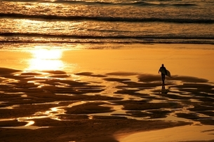 High angle view of surfer on beach walking to ocean carrying surfboard at sunsetの写真素材 [FYI03537048]