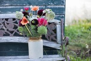 Flower bouquet in jar at garden allotmentの写真素材 [FYI03537994]