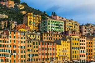 Detail of colorful hotels and apartments on hillside, Camogli, Liguria,  Italyの写真素材 [FYI03538012]