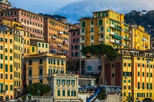 Detail of colorful apartments and hotels on hillside, Camogli, Liguria,  Italyの写真素材 [FYI03538014]