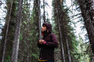 Low angle view of mid adult man in forest fastening waterproof coat, looking away, Moraine lake, Banの写真素材 [FYI03538187]