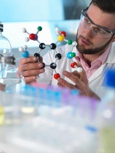 Scientist examining molecular model structure in laboratoryの写真素材 [FYI03538863]