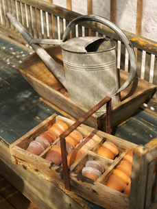 Flower pots in rustic wooden tray and watering can on garden benchの写真素材 [FYI03540401]