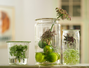 Three vintage jars with seed pods and wildflowers on living room shelfの写真素材 [FYI03540436]