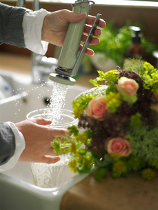 Woman hands filling vase with water at kitchen sinkの写真素材 [FYI03540440]