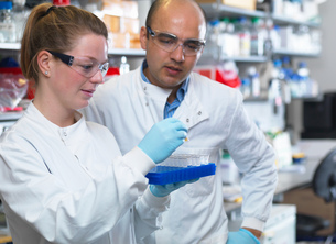 Scientists preparing to analyse samples from clinical trial, Jenner Institute, Oxford Universityの写真素材 [FYI03541856]