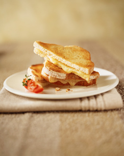 Toasted cheese sandwich with tomato slice on plateの写真素材 [FYI03542397]