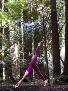 Mid adult woman doing yoga in forest, in down dog split poseの写真素材 [FYI03544239]