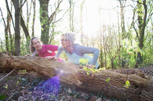 Women in forest doing press ups against fallen treeの写真素材 [FYI03544582]
